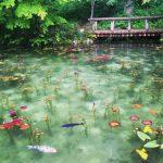 「モネの池」岐阜県関市の行き方と駐車場&おススメ周辺スポット